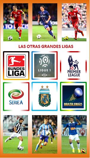 Las otras grandes ligas